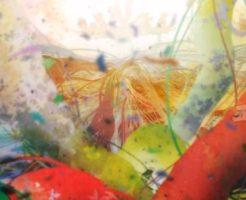 【十三番目のバーテックス】ルピナスの花
